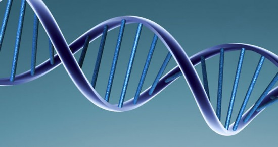DNA Double Helix Structure