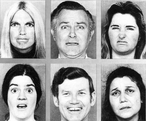 Ekman Facial Expressions