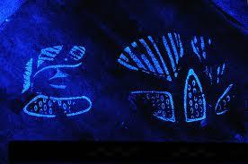 Luminol helps expose latent bloody shoeprints