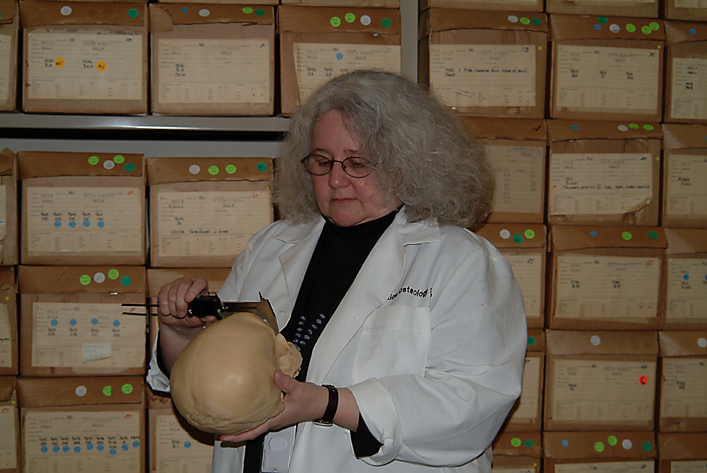 forensic anthropologist Forensic anthropology is the study of human behaviors as they apply to the law here are more definitions of the study of forensic anthropology.