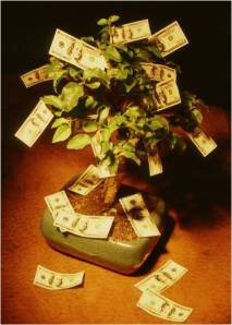 scam money tree