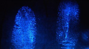 fingerprints_Large